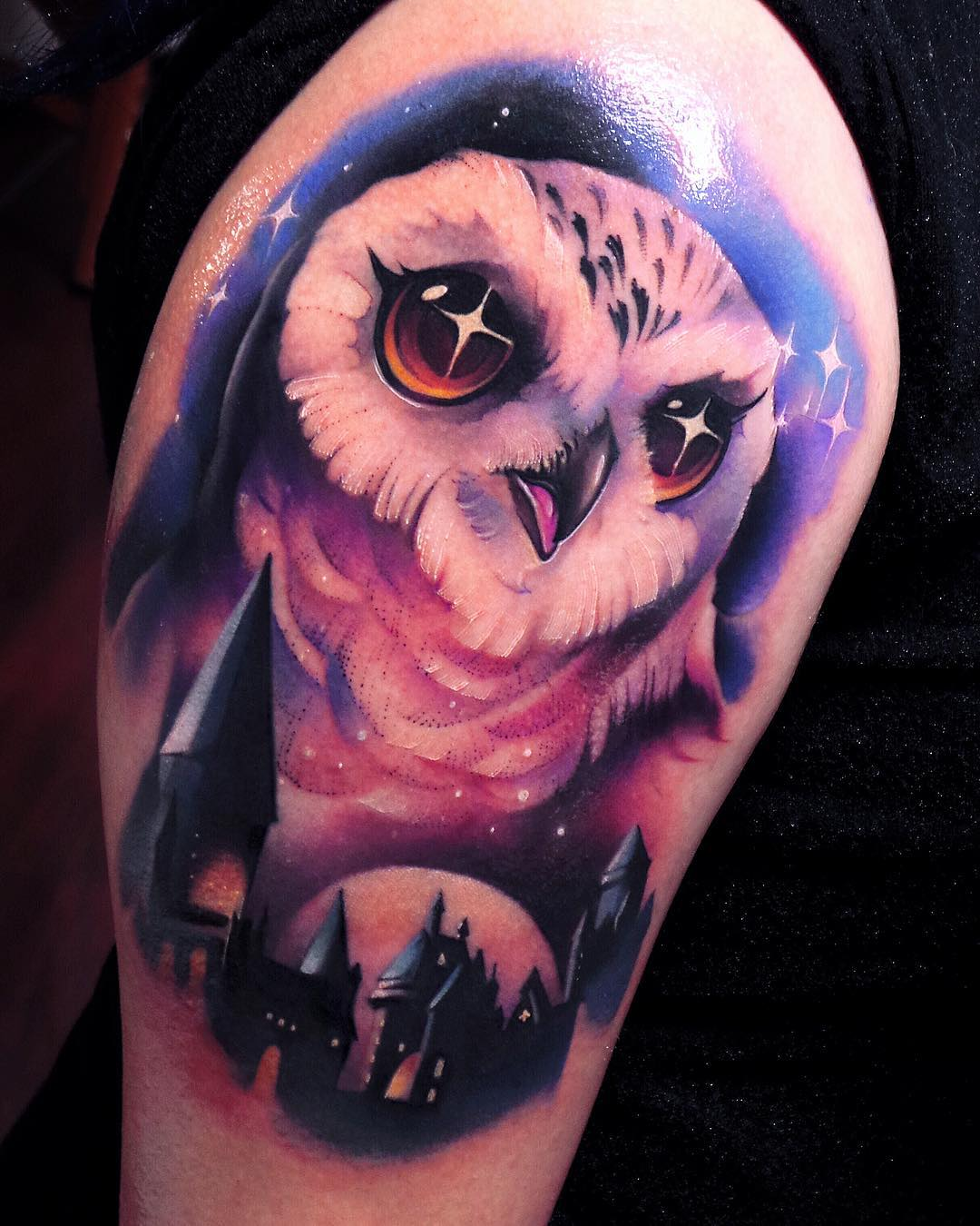 Hedwig Owl by Steven Compton